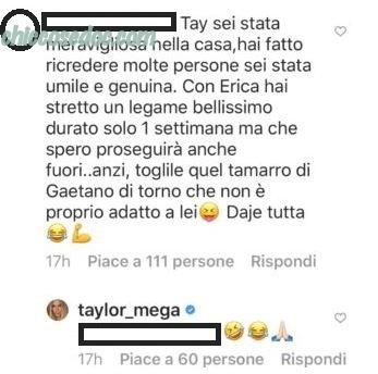 Taylor Mega